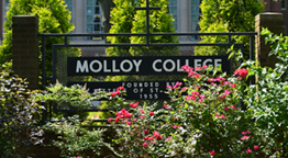 Molloy College Supports International Students