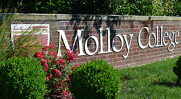 Molloy College in the News