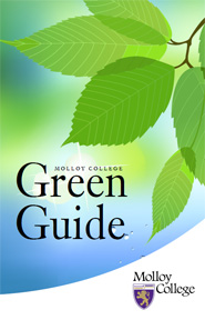 Download Sustainability Green Guide (in PDF format)